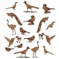 Sheet of Mini MDF Wood Birds - Exotic Birds