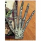 Skeleton Hand Bones MDF Wood Shape