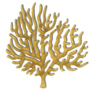 Coral - MDF Wood Shape Style 8