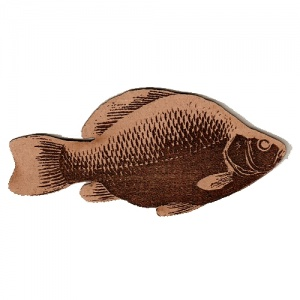 Crucian Carp MDF Fish Wood Shape