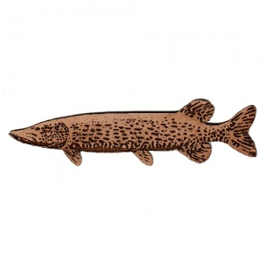 Pike MDF Fish Wood Shape
