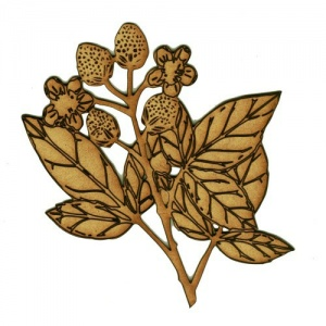 Raspberries & Leaf Sprig MDF Wood Shape