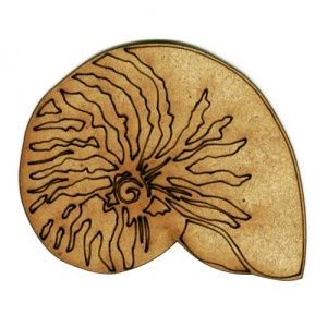 Nautilus Seashell - MDF Wood Shape