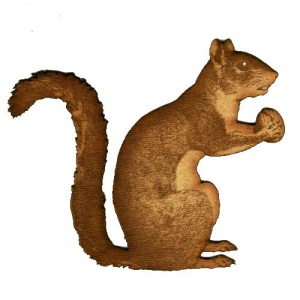 Squirrel with Walnut - MDF Wood Shape
