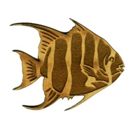 Angel Fish - MDF Tropical Fish Wood Shape Style 2