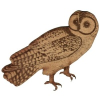 Chinese Owl - MDF Wood Shape