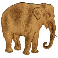 Indian Elephant - MDF Wood Shape