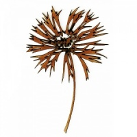 Knapweed Wildflower MDF Wood Shape