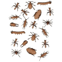 Sheet of Mini Insects - MDF Wood Shapes Style 3