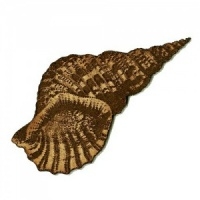Triton's Trumpet Seashell MDF Wood Shape