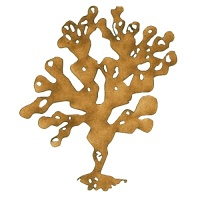 Coin Seaweed - MDF Wood Shape Style 5