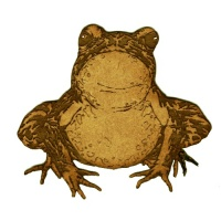 Staring Toad - MDF Wood Shape