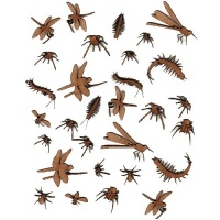 Sheet of Mini Insects - MDF Wood Shapes Style 1